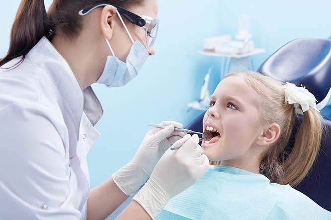 Сколько зарабатывает стоматолог в России